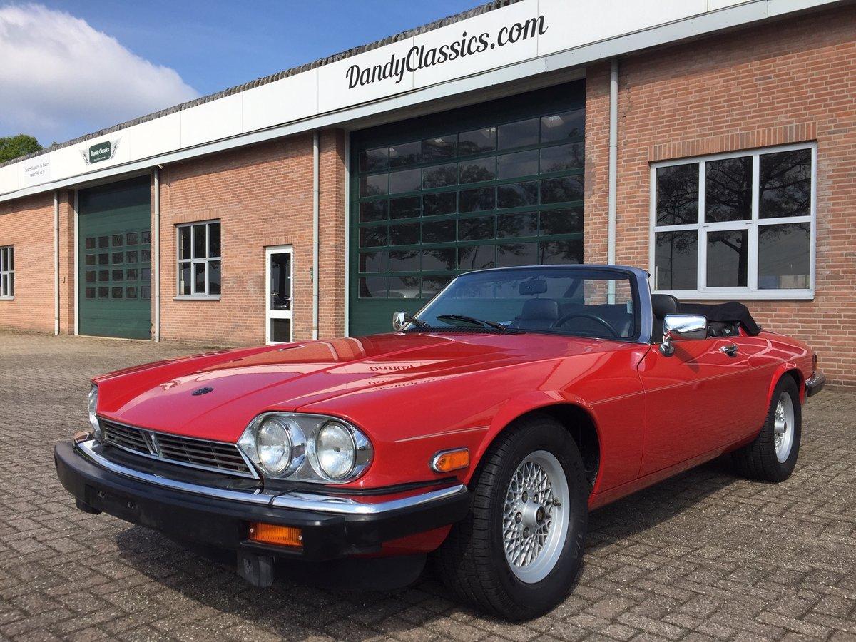 1989 jaguar xjs v12 review