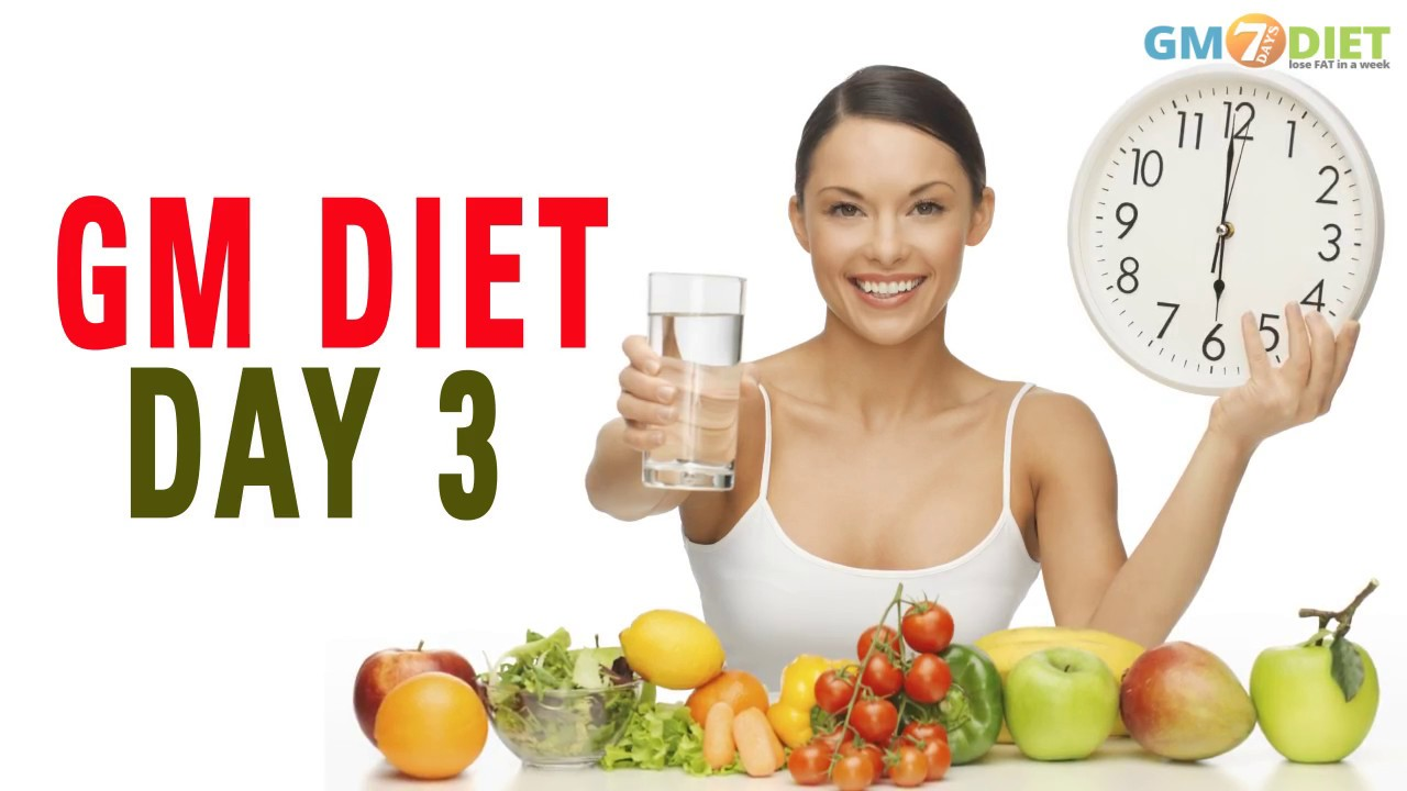 gm diet day 1 review
