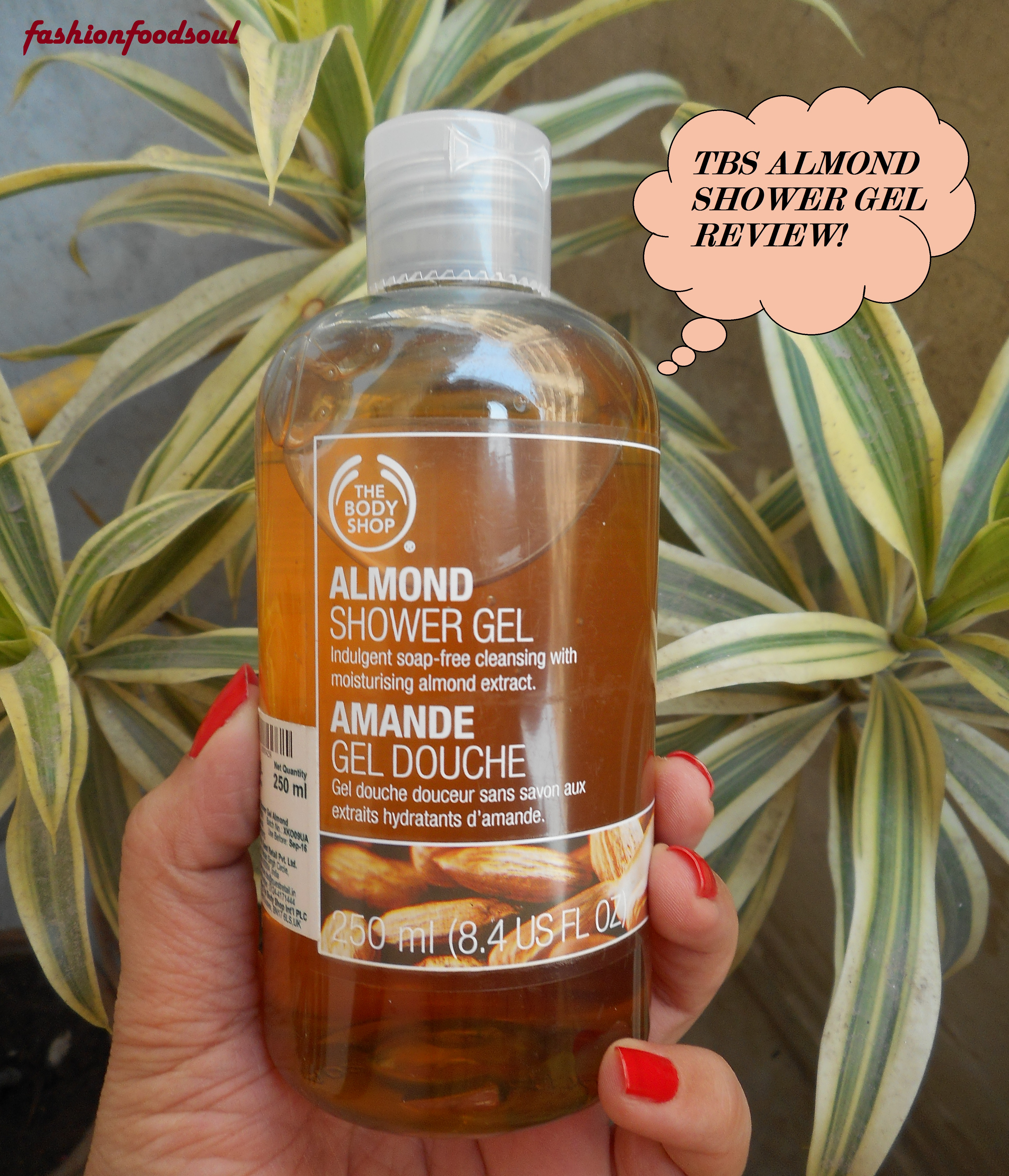 body shop shower gel review
