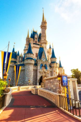 disney magic kingdom restaurants reviews