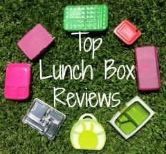 go green lunch box reviews