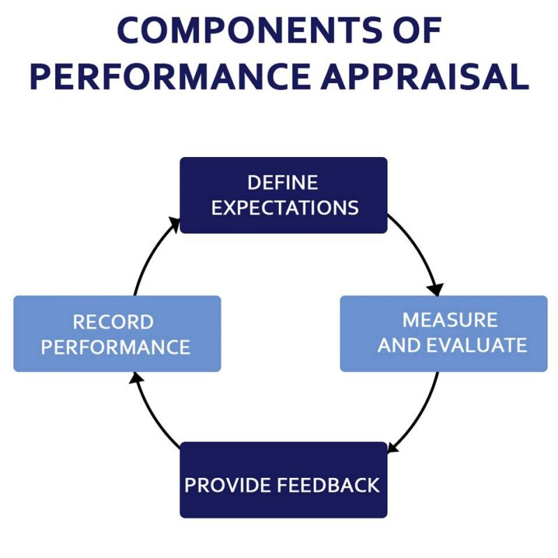 what is a performance review